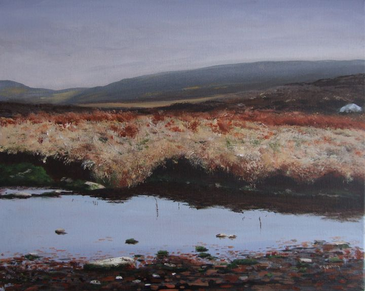 Bog Water, Wicklow - Blue Sky Art