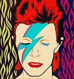 David Bowie (Ziggy Stardust)