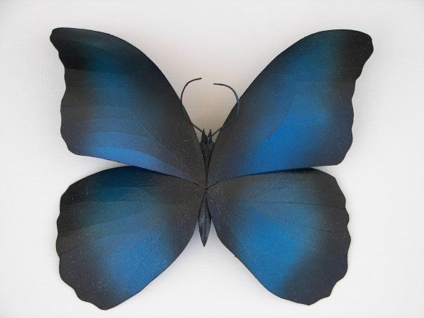 Blue Butterfly - Chad Stephens