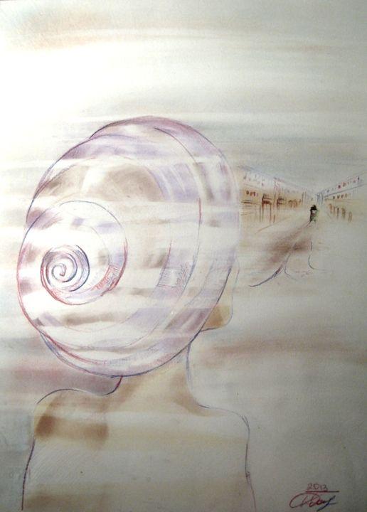 A big shell that looks Turin - yuliakorneva