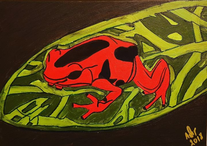 Red Poison Dart Frog - Nature's Portal