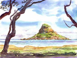Chinaman's Hat Island - John Norman Stewart