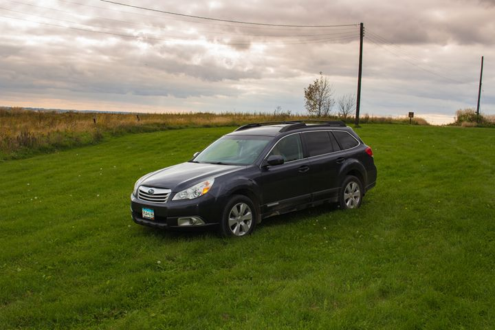 Outback in Grass - Ryans Photography