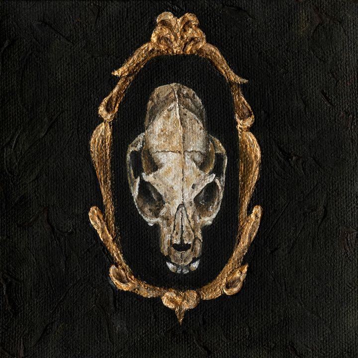 Cat skull - Amanda Fabian