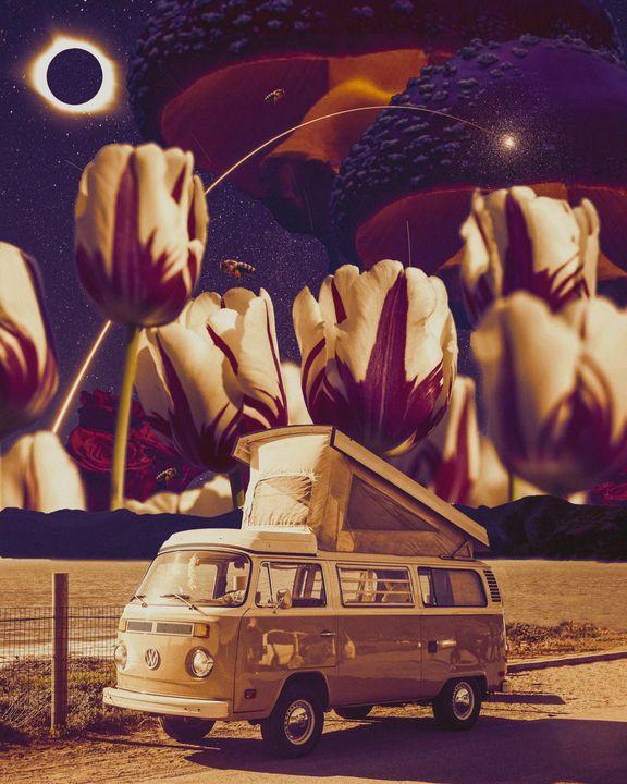Mushroom Kingdom - Trippy Genius