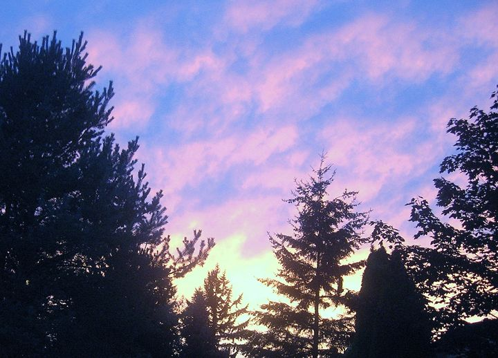 Summer Sunset - Blue-Inspired