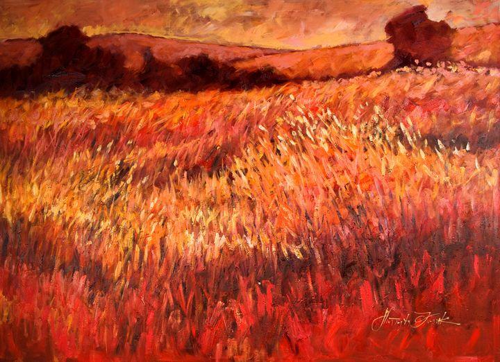 Red meadow - Margaret Raven Gallery