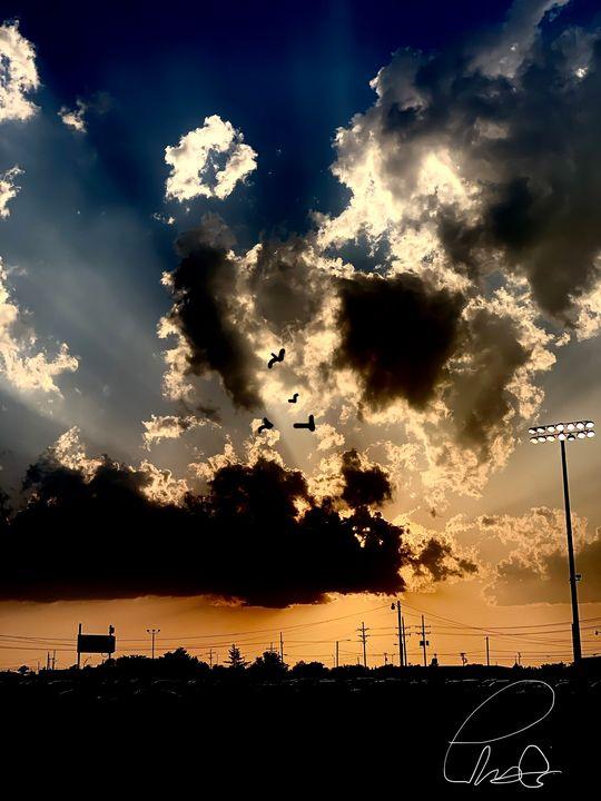 Ballpark - Tramaine'Deon