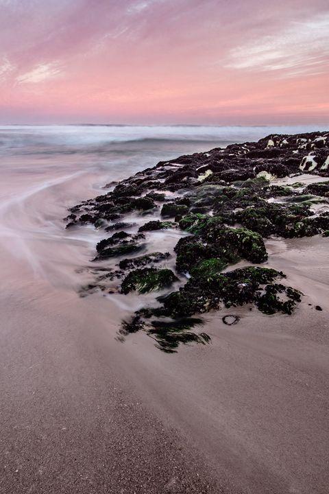 Palmiet I, Kleinmond, South Africa. - Christelle Duvenage