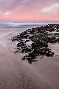 Palmiet I, Kleinmond, South Africa.