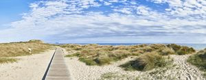 Boardwalk to Hengistbury Head - Gem Photography
