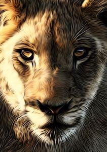 Lion's Head - Gem Photography