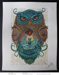 Owl's Path