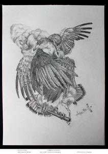 Eagles Hi'eye