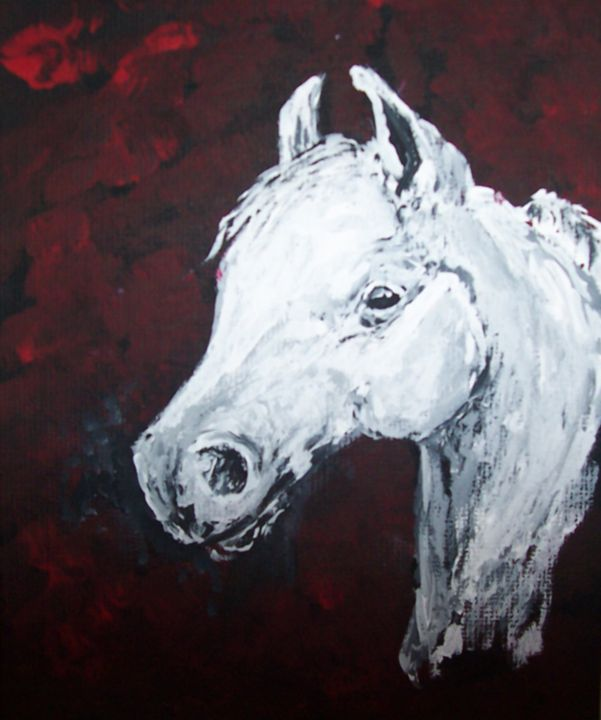 Proud Arabian Horse - Tami Parrington Fine Art