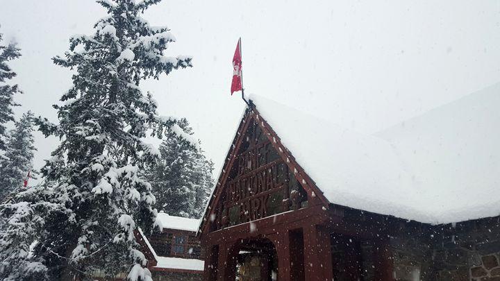 Banff - Longpre Studios Gallery