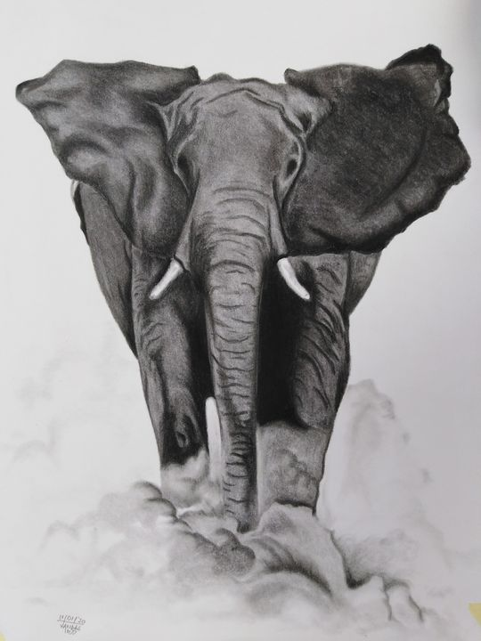 Fuming elephant - airMaXe de Artist