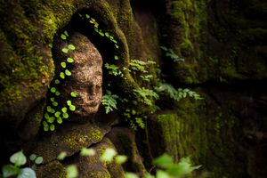 Hidden treasures of Angkor