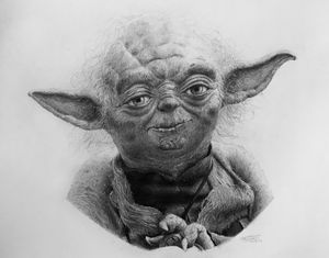 """""""Do. Or do not. There's is no try."""""""