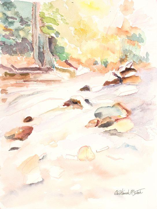 Rocks and Streams - Gail H. McIntosh