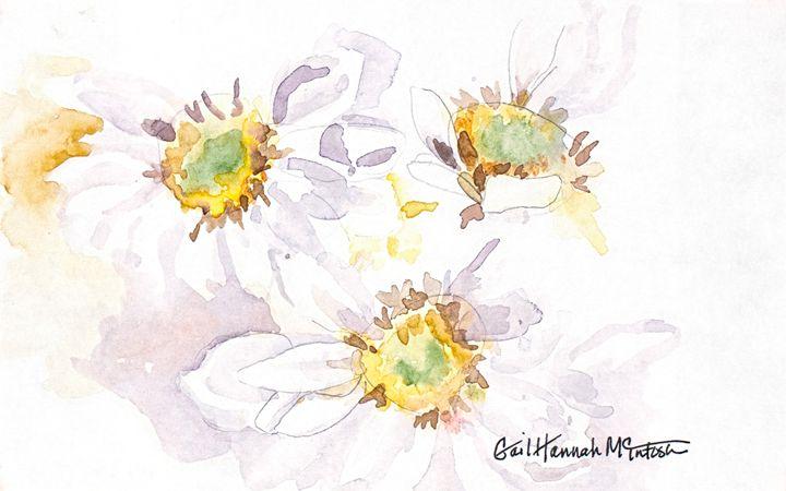 California Saxifrage - Gail H. McIntosh