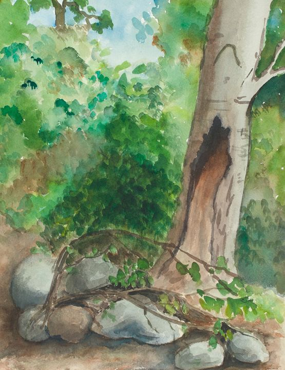 Tree in the Forest - Gail H. McIntosh