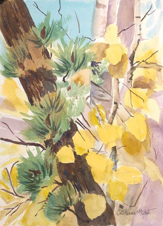Ginkgo - Gail H. McIntosh
