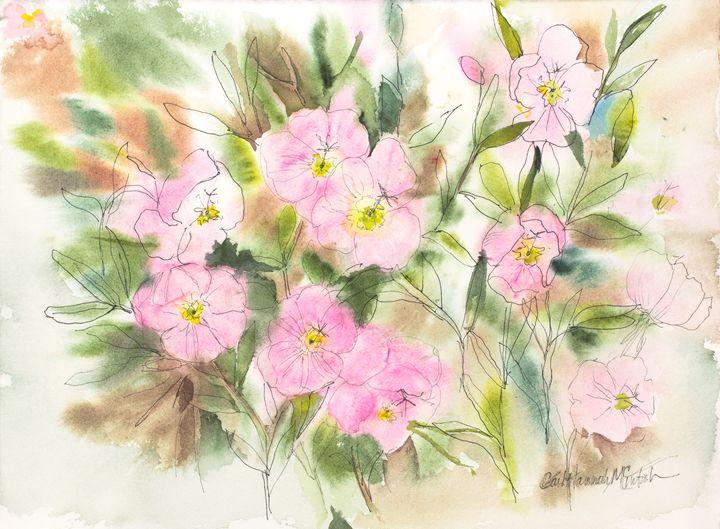Pink Blush - Gail H. McIntosh