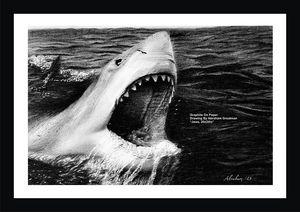 """Jaws"" 20"" x 24"" - Sierra Artist Gallery"