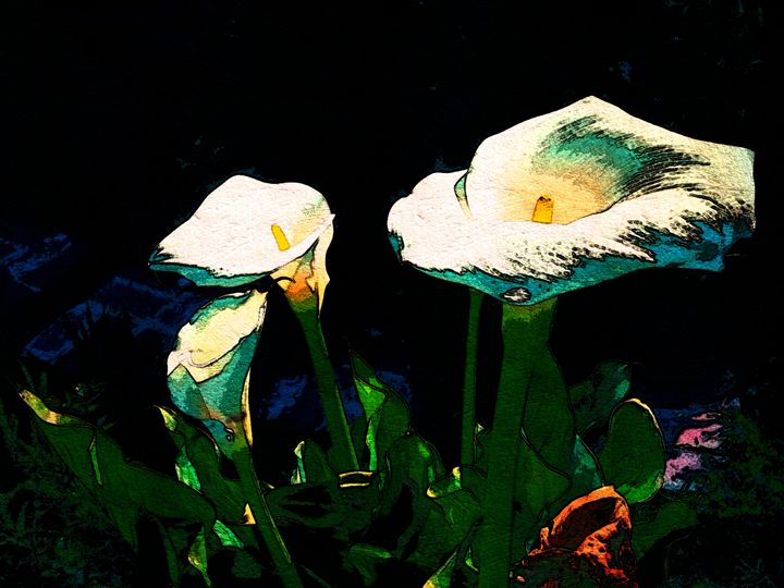 Samuel's Lillies - Abstractly Abraham