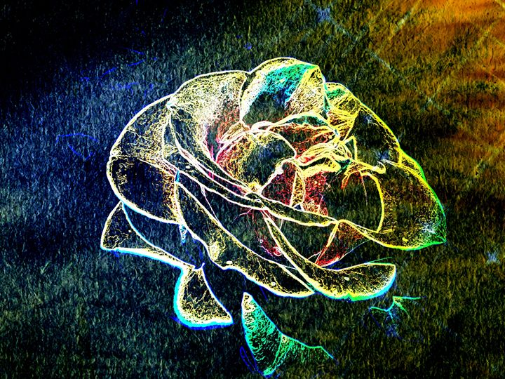 Moonlight Rose Lux - Abstractly Abraham