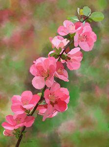 """Spring"" by Seva"