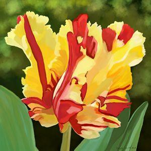 """Tulip"" by Seva"