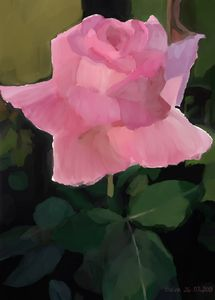 """Rose"" by Seva"