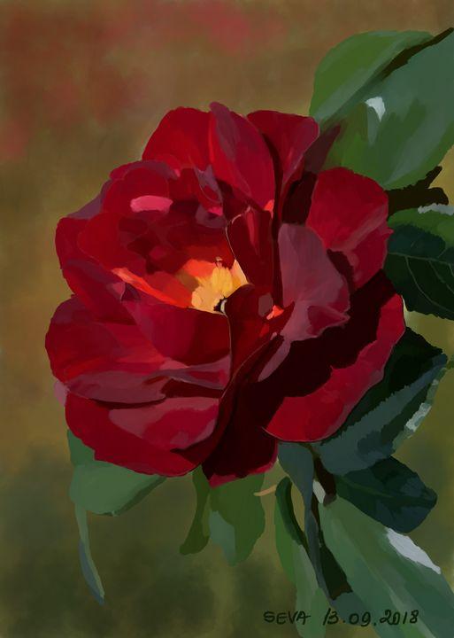 """""""Red Rose"""" by Seva - Seva"""
