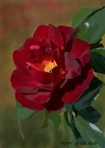 """Red Rose"" by Seva"