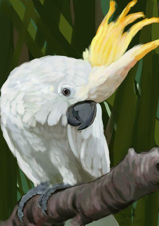 """White Cockatoo Parrot"" - Seva"