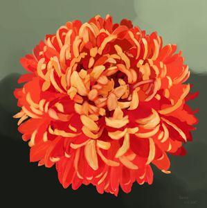 """Chrysanthemum"" by Seva Popa"