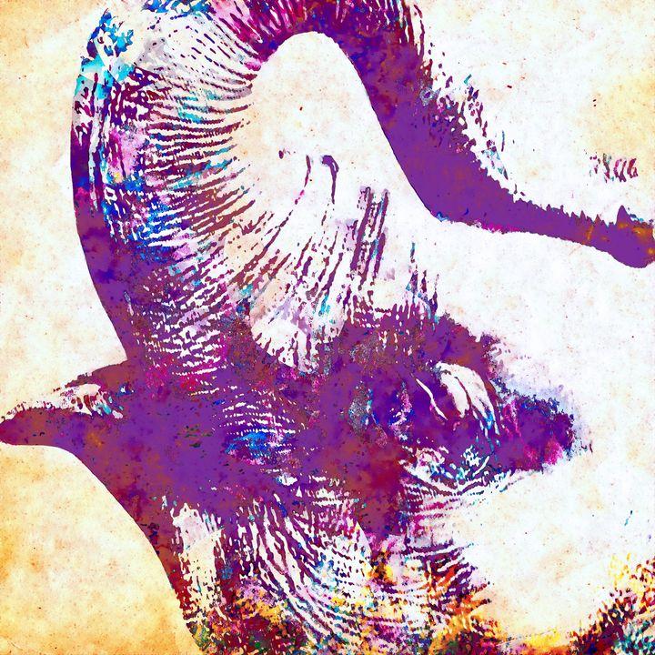 Elephant - Stacey Art Prints