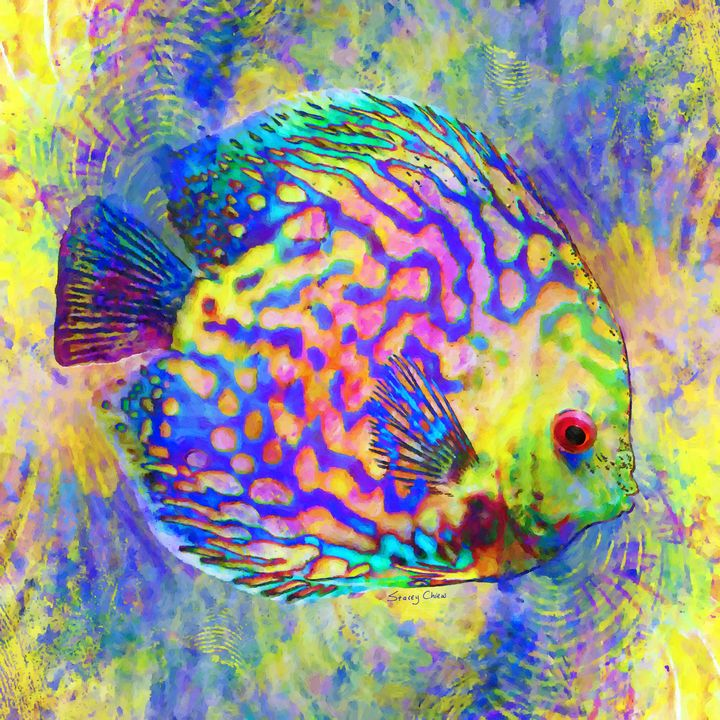 Discus Fish - Stacey Art Prints