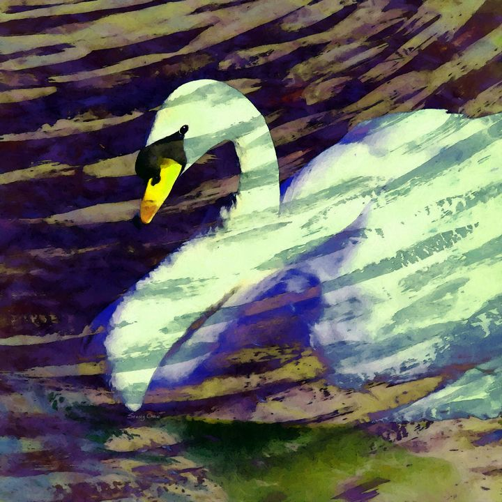Autumn Swan - Stacey Art Prints