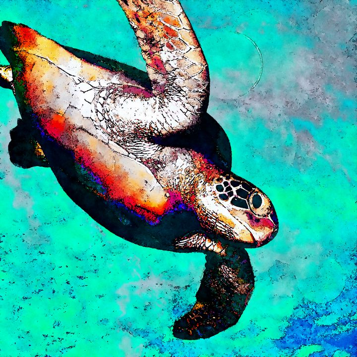 Sea Is My Home - Hawksbill - Stacey Art Prints