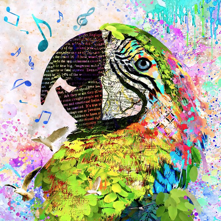 Singing The Blues - Macaw - Stacey Art Prints