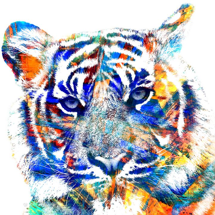 The White Tiger - Stacey Art Prints