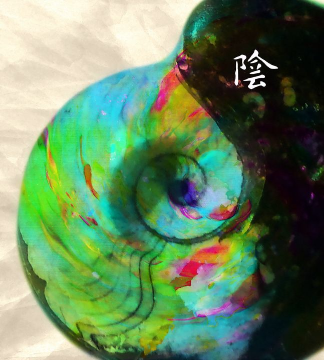 Yin and Yang - Tao - Stacey Art Prints