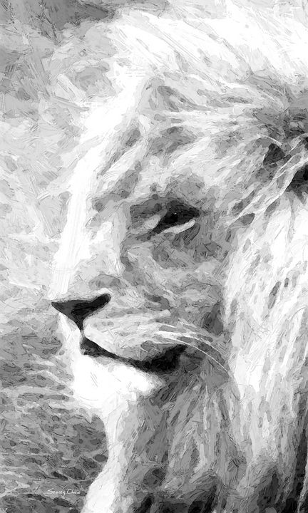 Lion - Stacey Art Prints