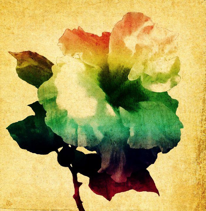 Hibiscus Art - Stacey Art Prints