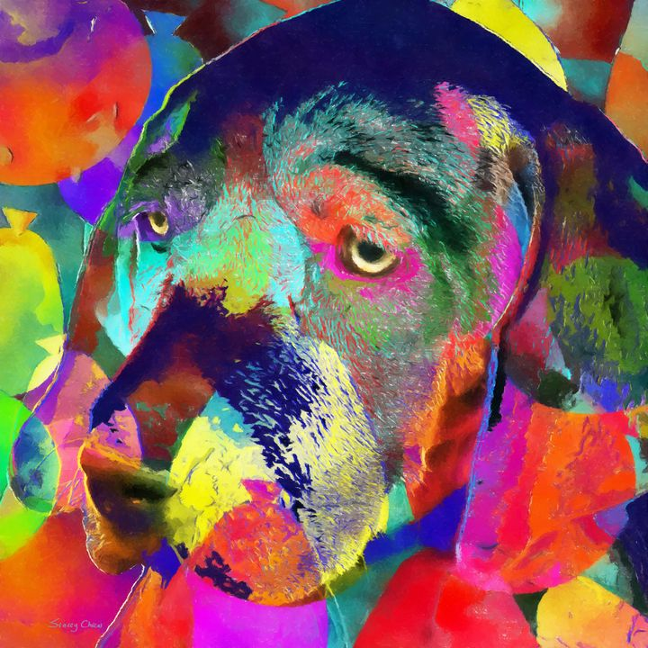 Colorful Dog - Stacey Art Prints