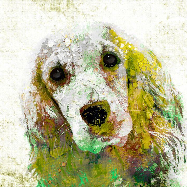 Cocker Spaniel - Stacey Art Prints