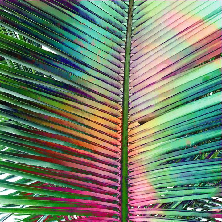 Palm Leaf - Stacey Art Prints